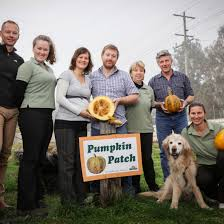 Styrian Pumpkin Seed Oil Prostate by Australian Pumpkin Seed Company Faces Of Small Business