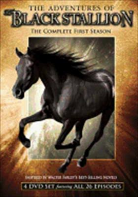 The Adventures of the Black Stallion The Complete First Season DVD