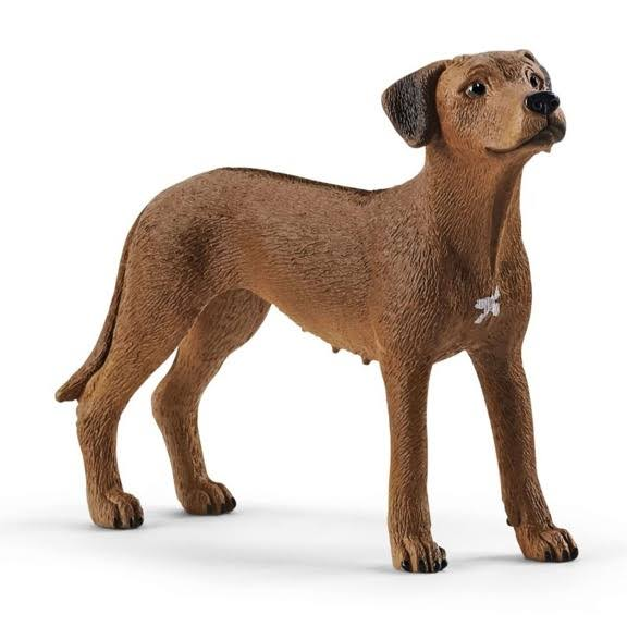 Schleich Farm World Rhodesian Ridgeback Toy Figure