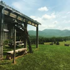 Pea Ridge Christmas Tree Farm by Explore The Map Of Central Shenandoah Fields Of Gold