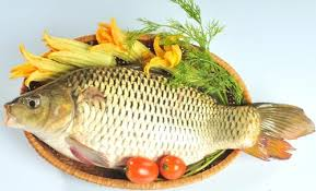 Ăn cá giúp thai phụ bớt lo âu