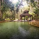 imagem de Nova Brasilândia Mato Grosso n-22