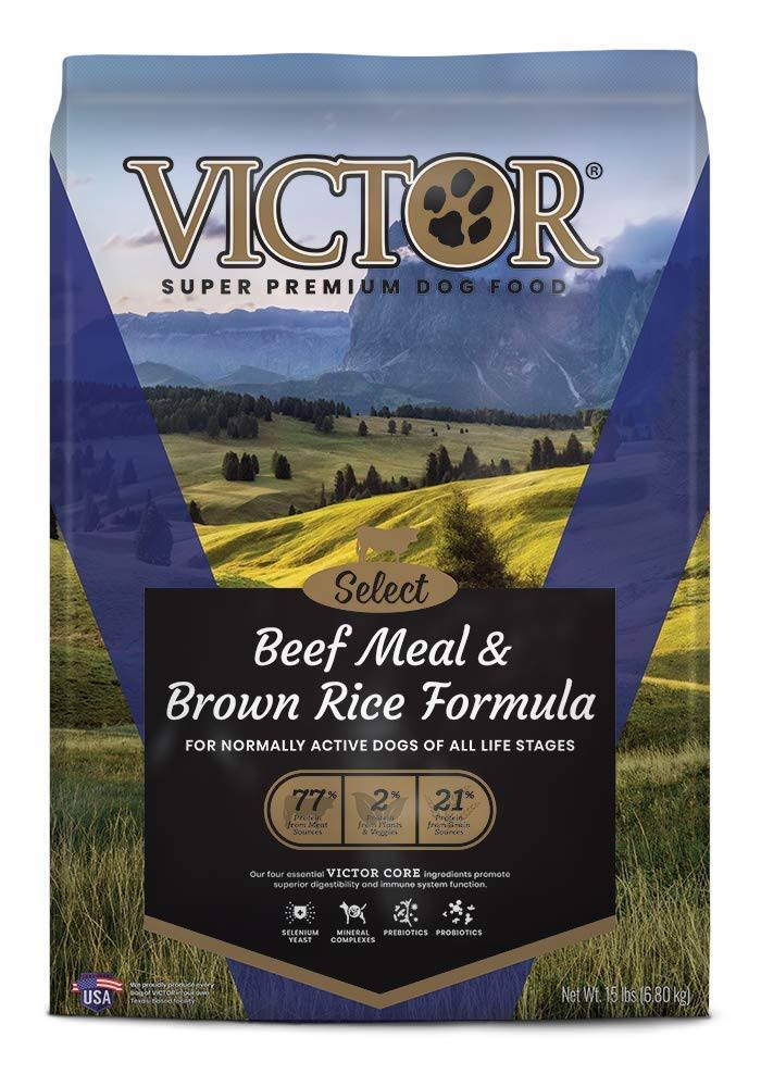 Victor Select Beef Meal & Brown Rice Dry Dog Food - 15lb