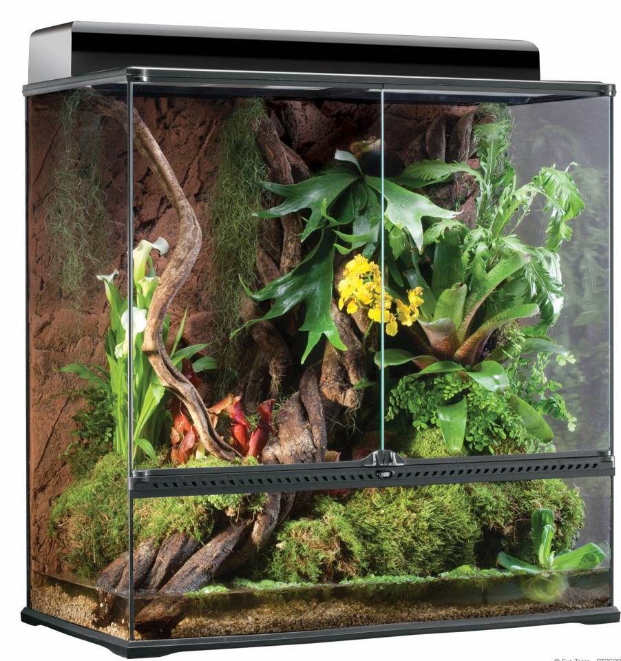 Exo Terra High Glass Terrarium - Large