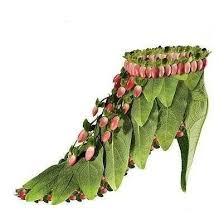 احذية غريبة وعجيبة images?q=tbn:ANd9GcT