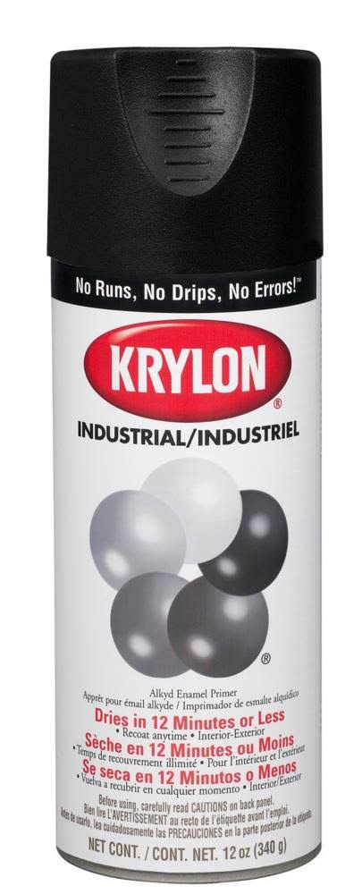 Krylon Indoor & Outdoor Spray Paint - Flat Black, 12oz