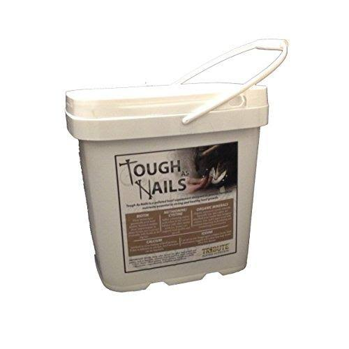 Nutrition Tough As Nails Pelleted Hoof Supplement Bucket - 11lbs