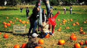 Trinity Pumpkin Patch Baton Rouge by Outdoor New York Things To Do And Outdoor Deals