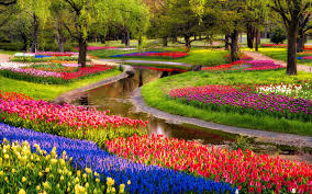 Flowers For Flower Beds by Beautiful Flower Beds Garden Ideas