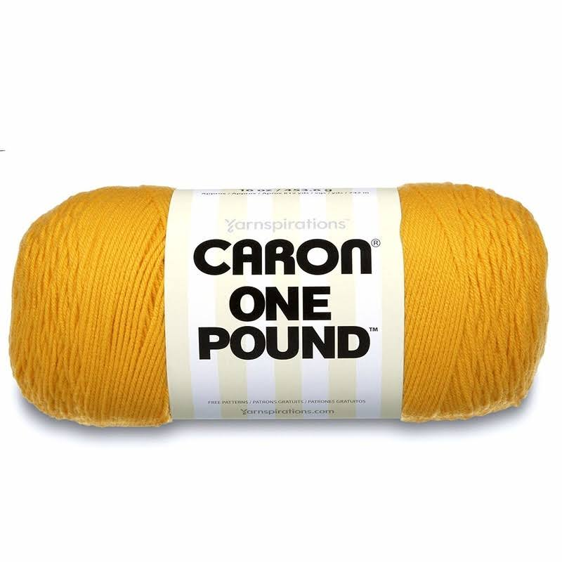 Caron Single Ball One Pound Yarn - Sunflower, 16oz