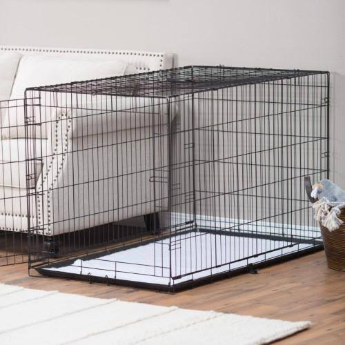 ProValu Single-Door Dog Crate - Black