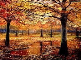 Beneath Autumn Boughs 1024