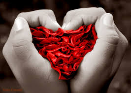 Poemas de amor-http://t3.gstatic.com/images?q=tbn:i0-P4yobdMRbcM:http://caminhorecife.files.wordpress.com/2007/05/eu-queria-ser-amor-geisa.jpg